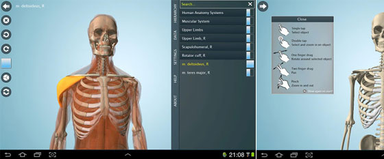 android_anatomy3d